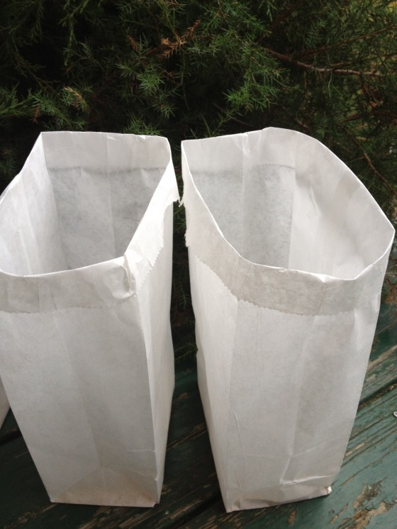 We used white paper bags but you can use brown. Fold top  part of bag over to give more strength