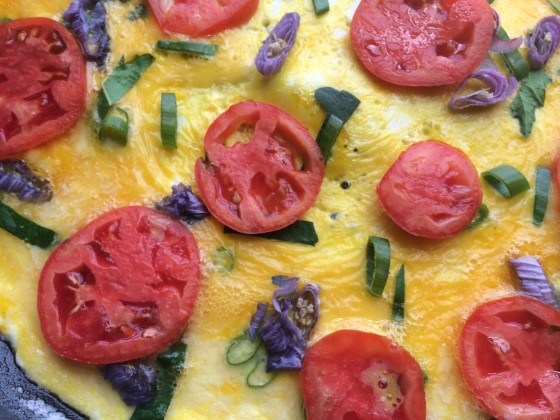 Omelet with chopped Rose of Sharon buds and chopped Rose of Sharon leaves. Organic, homegrown tomatoes are superior to anything you get in the store and chopped fresh herbs