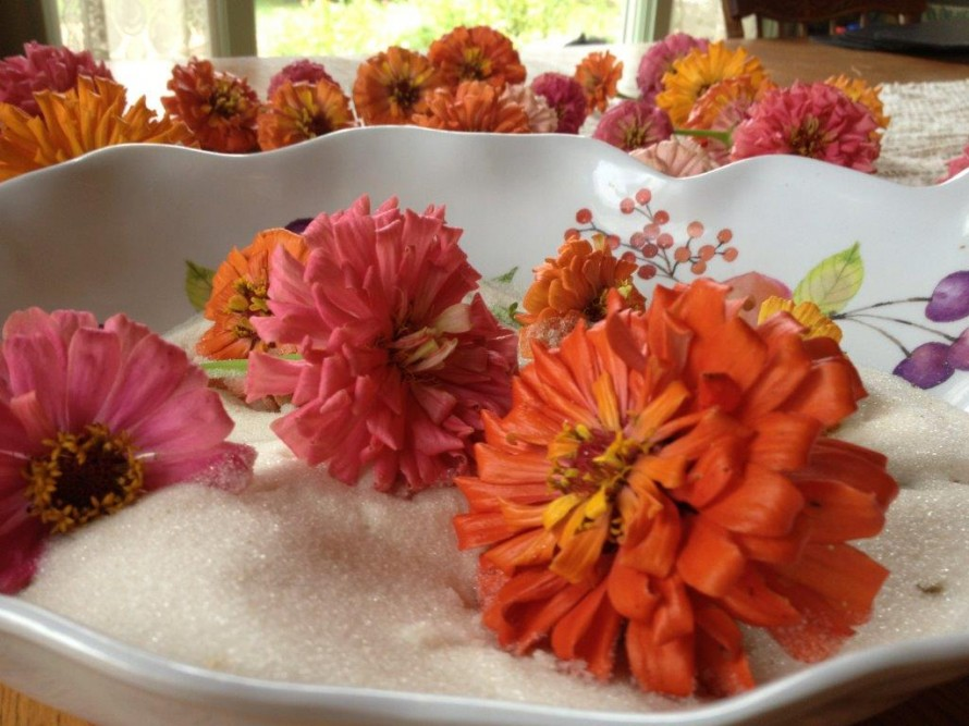 Pour silica crystals into a large bowl- set flowers on top