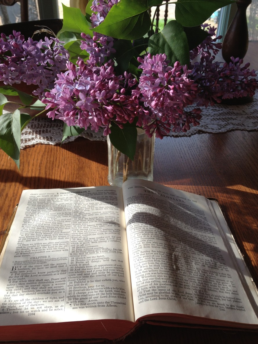 My favorite fragrance- Lilac-it's breathtaking!      I Thessalonians 5